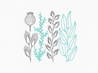 minimal flowers