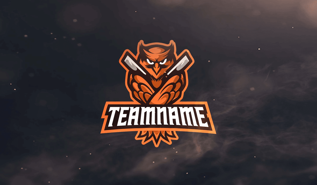 Owl logo team